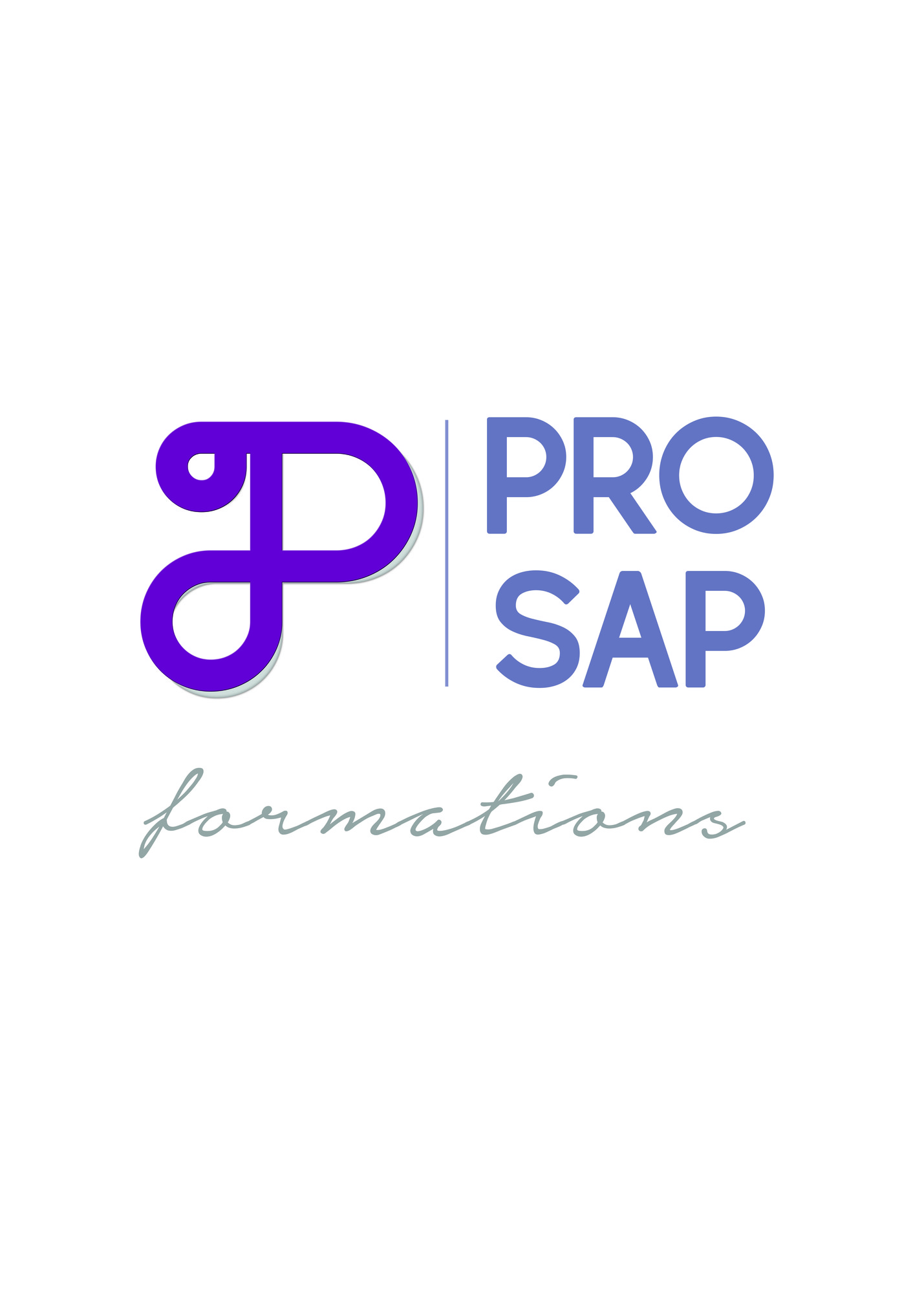 PRO SAP FORMATIONS